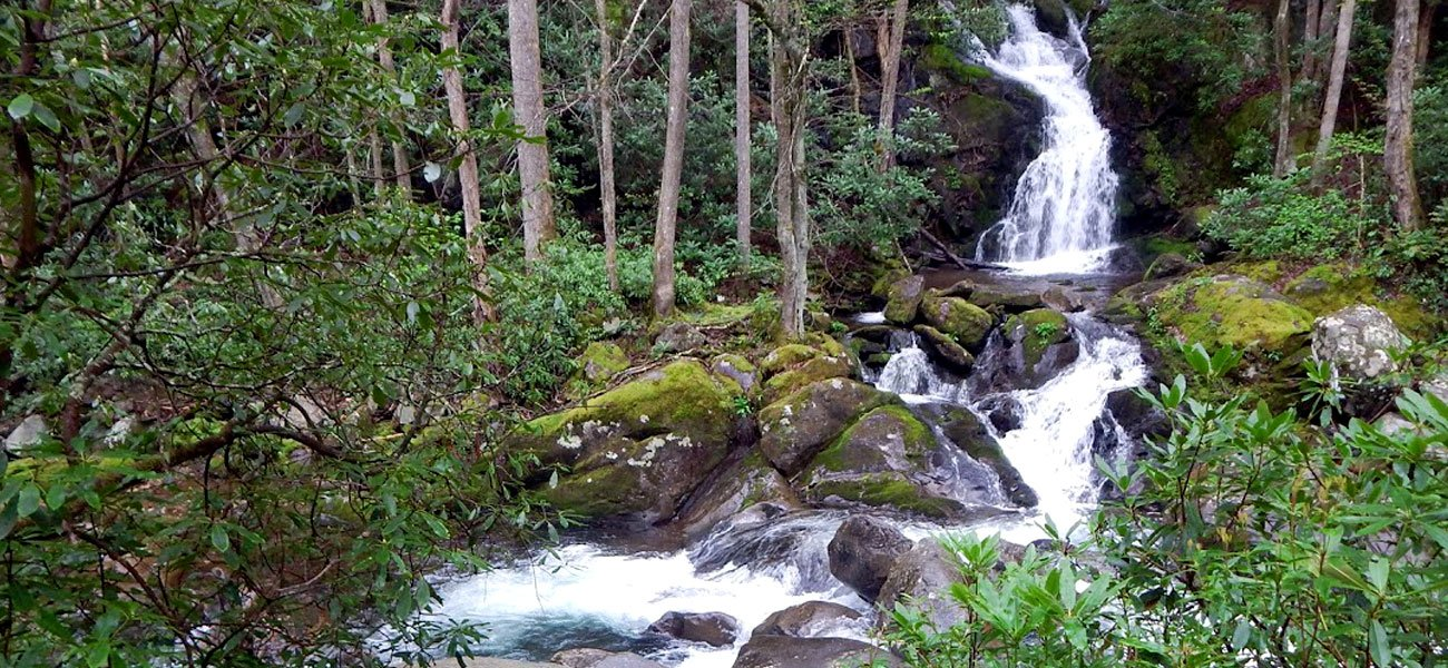 Hiking vacation in Great Smoky Mountains National Park