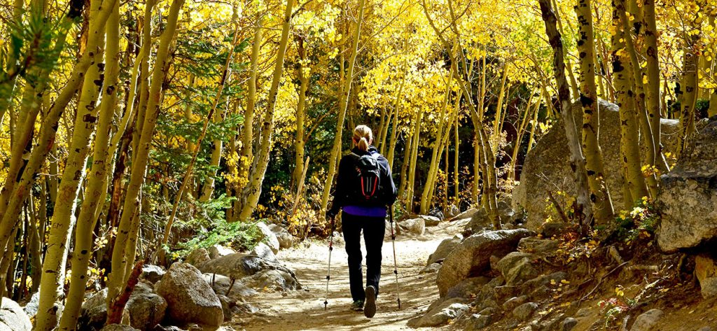 Hiking poles are a great idea for active senior hikers