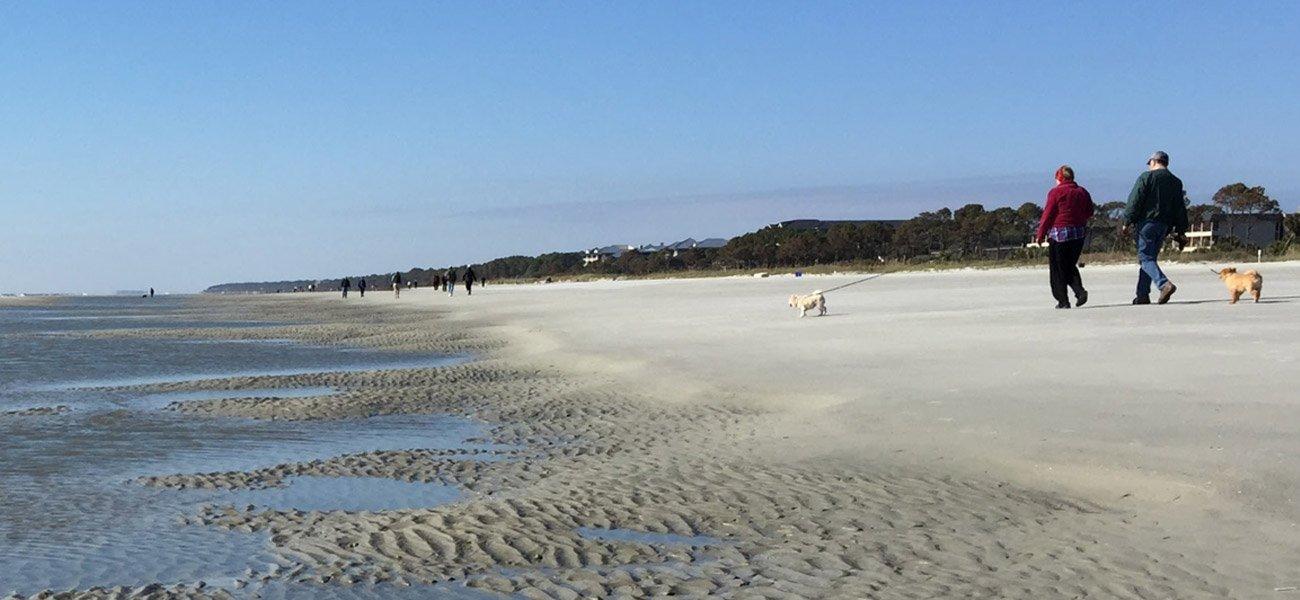 Beach-Tide-Pool-Hilton-Head-Image