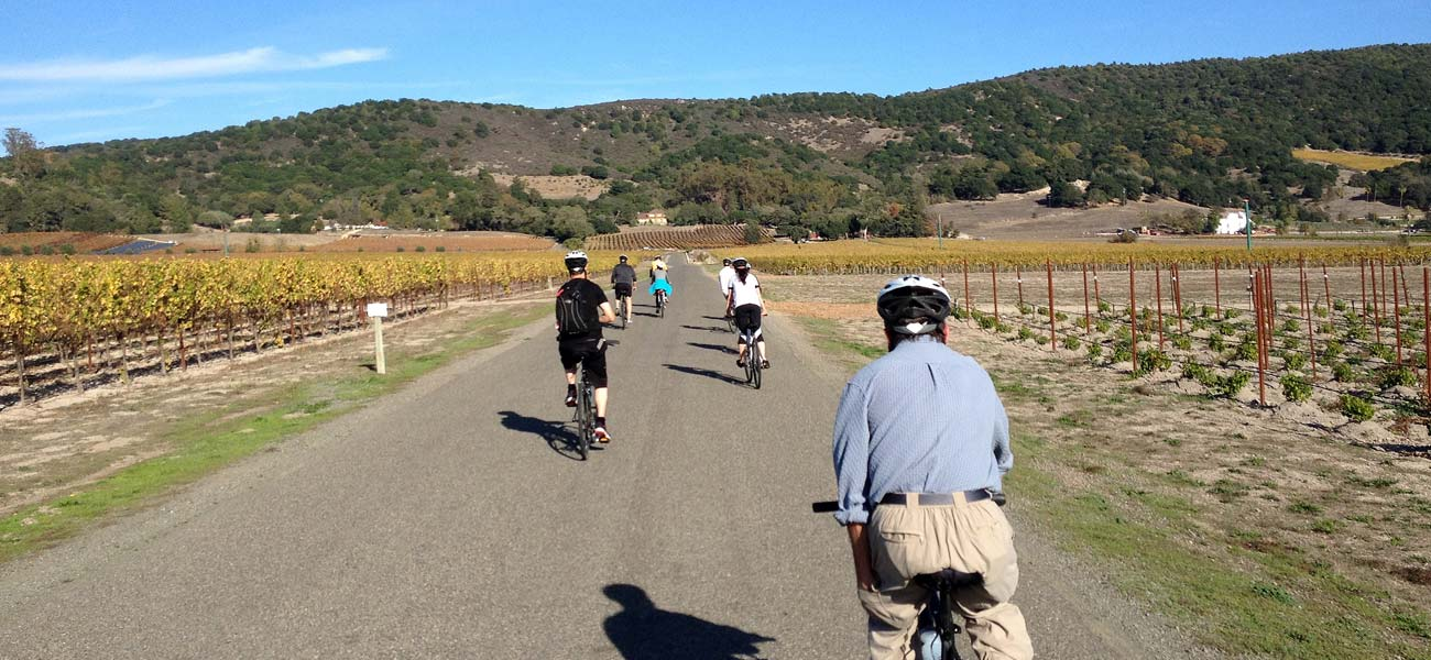 Bicycle Sonoma wine country