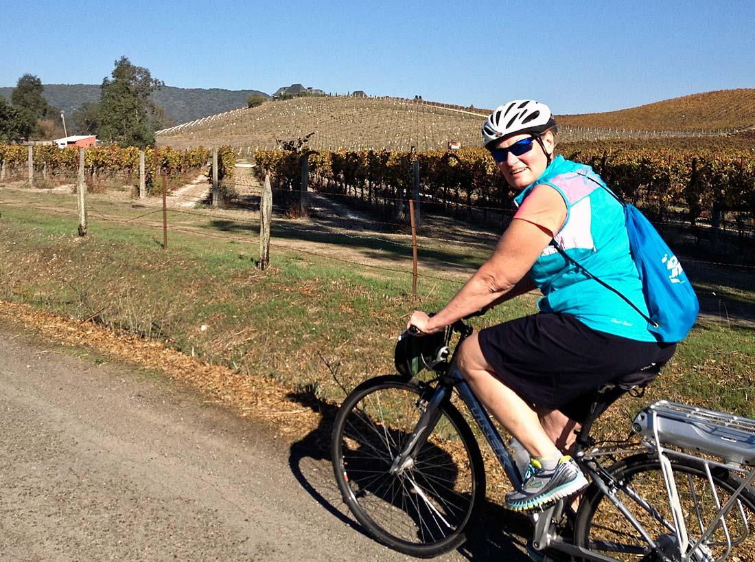 E-bike tour Sonoma wine country