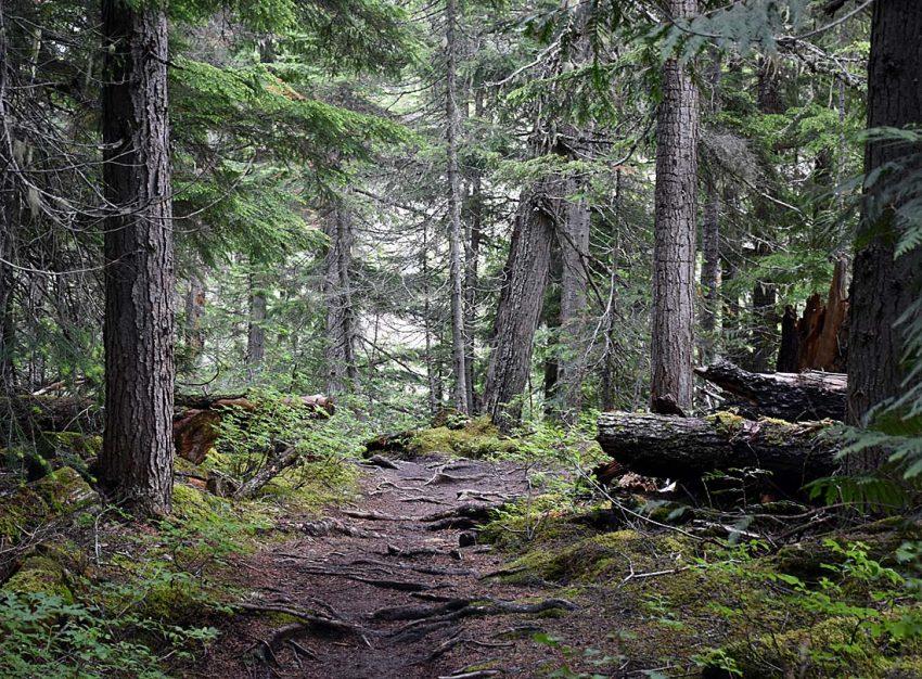 Yoho National Park less crowded than Banff