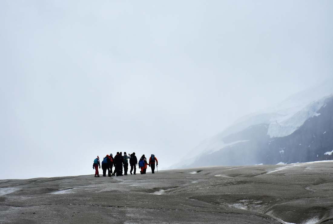 Explore icefields parkway glacier guided hike educational tour