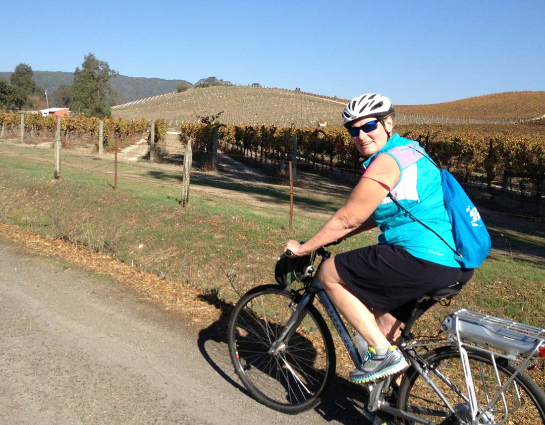 Electric bicycle tour wine country California