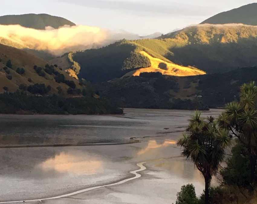 Cable Bay Nelson Tasman New Zealand