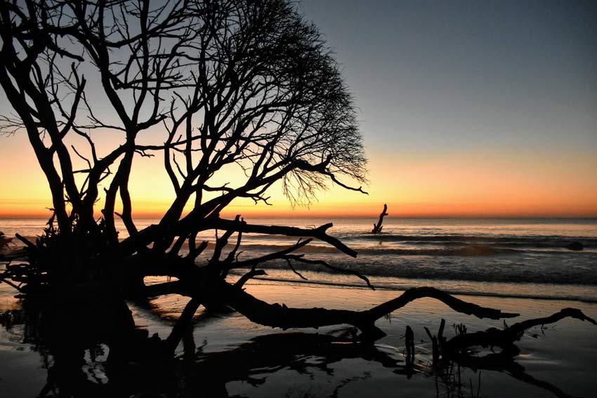 Charleston South Carolina sunrise boneyard beach