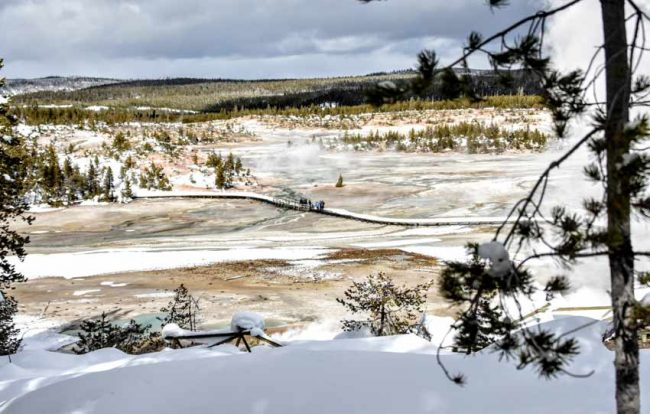 norris geyser basin winter yellowstone national park