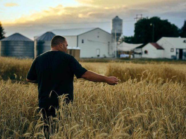 The brewery produces its beer entirely from ingredients harvested on the family farm.