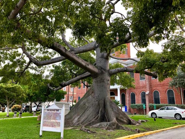 top attractions key west