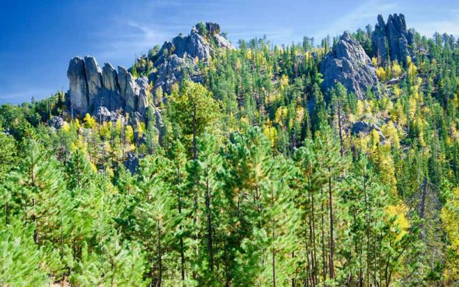 We took scenic drives and hiked for seven days in the Black Hills